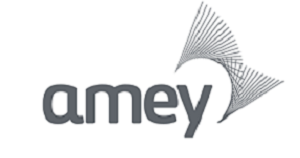 Amey awarded Leaders in Diversity